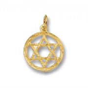 9ct Gold textured Star of David pendant in circle 0.9g